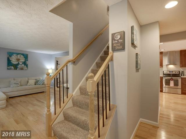 7850 Flintshire Court, Pasadena, MD 21122 (#AA10348031) :: The Sebeck Team of RE/MAX Preferred