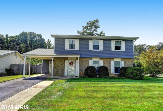 1037 Springhill Way, Gambrills, MD 21054 (#AA10353028) :: Eric Stewart Group