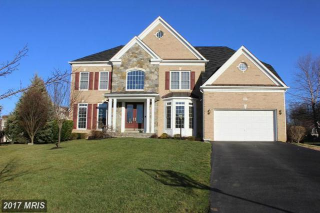 807 Colette Court, Odenton, MD 21113 (#AA9896487) :: Pearson Smith Realty