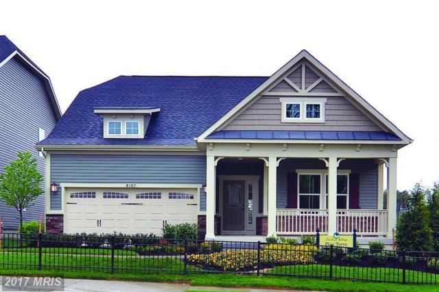 3023 Sunny Ridge Drive, Odenton, MD 21113 (#AA9913440) :: LoCoMusings