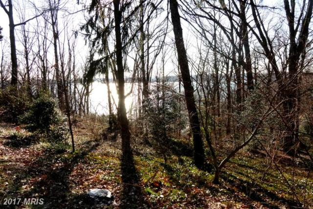 384-LOT Old County Road, Severna Park, MD 21146 (#AA9926597) :: Pearson Smith Realty