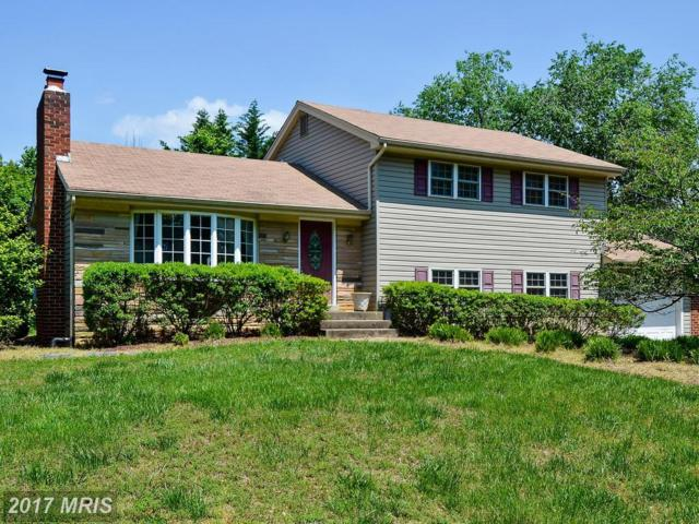 110 Lake View Drive, Annapolis, MD 21403 (#AA9956443) :: Pearson Smith Realty