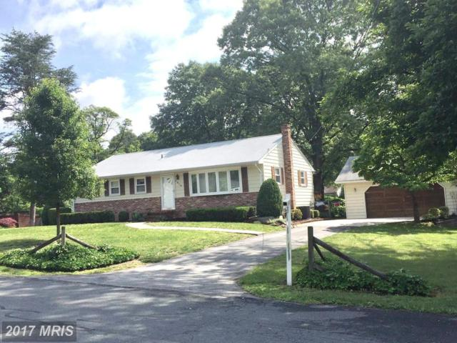 7819 Walnut Tree Road, Severn, MD 21144 (#AA9961526) :: Pearson Smith Realty