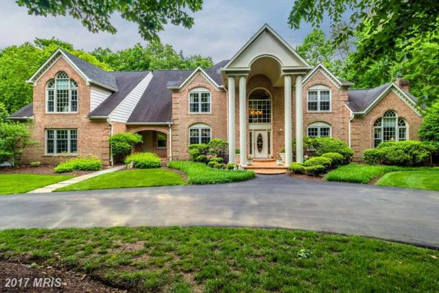 1005 Eagle Passages Court, Davidsonville, MD 21035 (#AA9966857) :: LoCoMusings