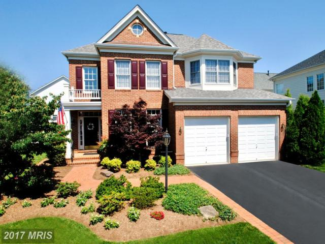 723 Coybay Drive, Annapolis, MD 21401 (#AA9970732) :: Pearson Smith Realty