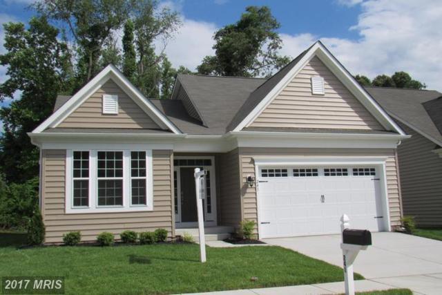 241 Saltgrass Drive, Glen Burnie, MD 21060 (#AA9972026) :: Pearson Smith Realty