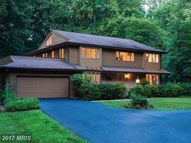 875 Holly Drive S, Annapolis, MD 21409 (#AA9972198) :: Pearson Smith Realty