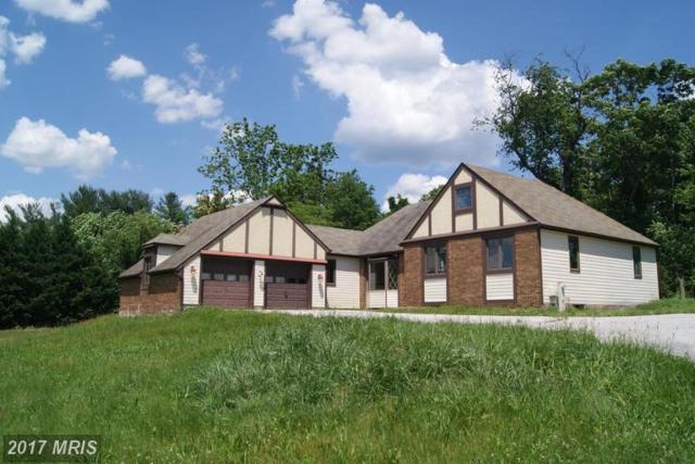 1029 Hansel Drive, Millersville, MD 21108 (#AA9973040) :: LoCoMusings