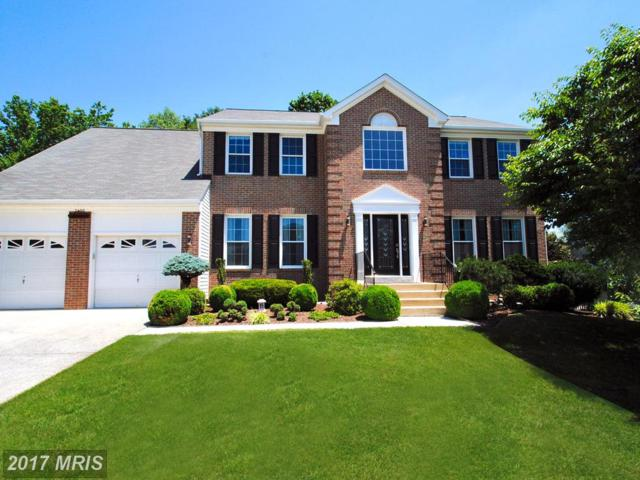 2488 Symphony Lane, Gambrills, MD 21054 (#AA9975119) :: Pearson Smith Realty