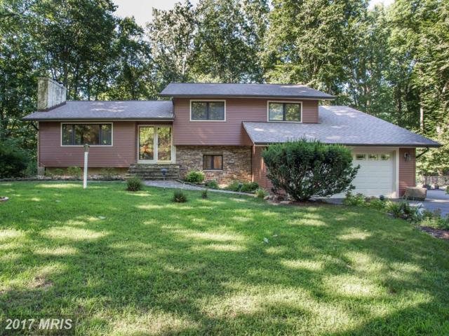 1712 Point No Point Drive, Annapolis, MD 21401 (#AA9977100) :: Pearson Smith Realty