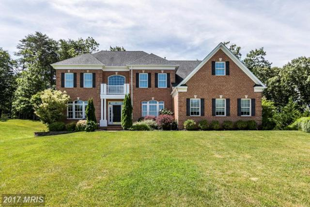 1625 Carnoustie Drive, Pasadena, MD 21122 (#AA9979585) :: The Sebeck Team of RE/MAX Preferred