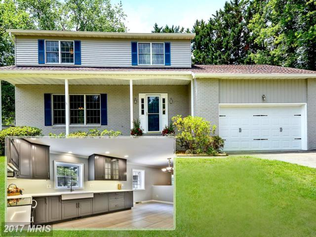 2709 Coriander Place, Edgewater, MD 21037 (#AA9981360) :: RE/MAX One