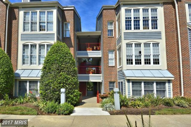 2710 Summerview Way #1303, Annapolis, MD 21401 (#AA9984005) :: LoCoMusings