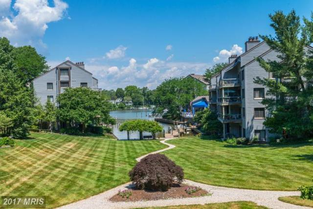 6 Spa Creek Landing B2, Annapolis, MD 21403 (#AA9984816) :: The Sebeck Team of RE/MAX Preferred