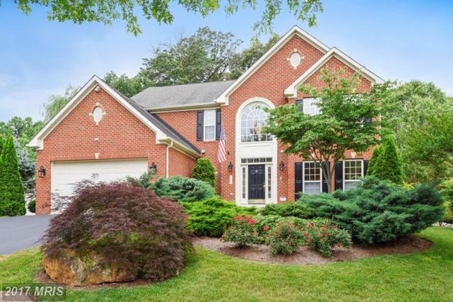 306 Cattail Passage Court, Severna Park, MD 21146 (#AA9986610) :: RE/MAX One