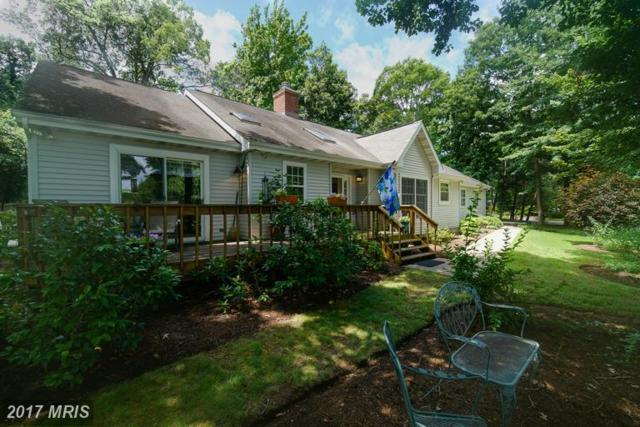 1511 Gordon Cove Drive, Annapolis, MD 21403 (#AA9986713) :: RE/MAX One