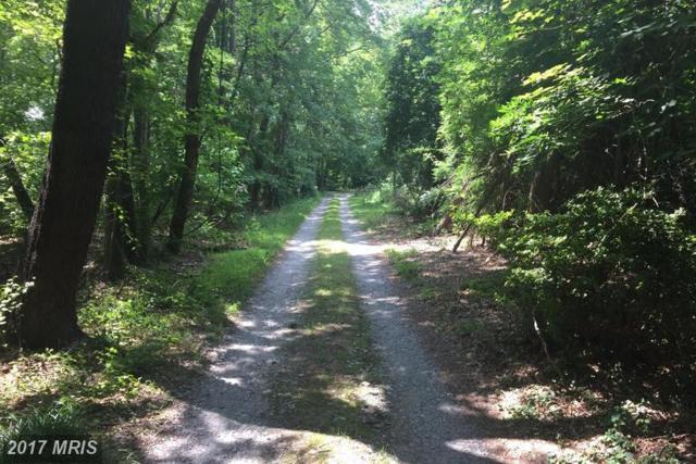 664 Chestnut Springs Lane, Glen Burnie, MD 21060 (#AA9987700) :: LoCoMusings