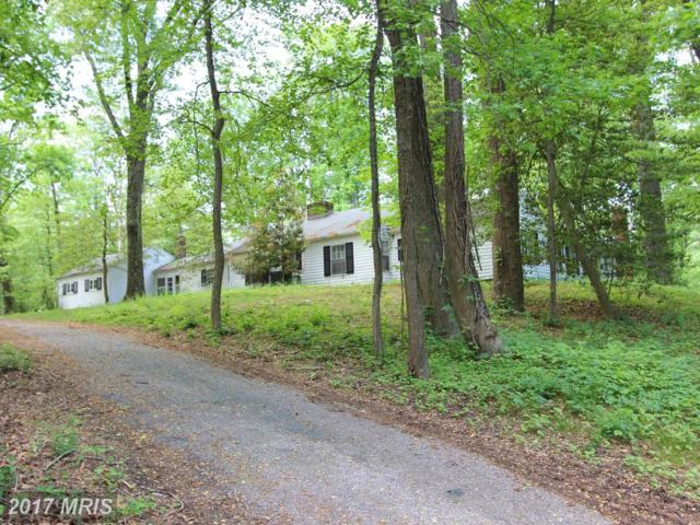 1711 St Giles Road, Gibson Island, MD 21056 (#AA9992302) :: Pearson Smith Realty