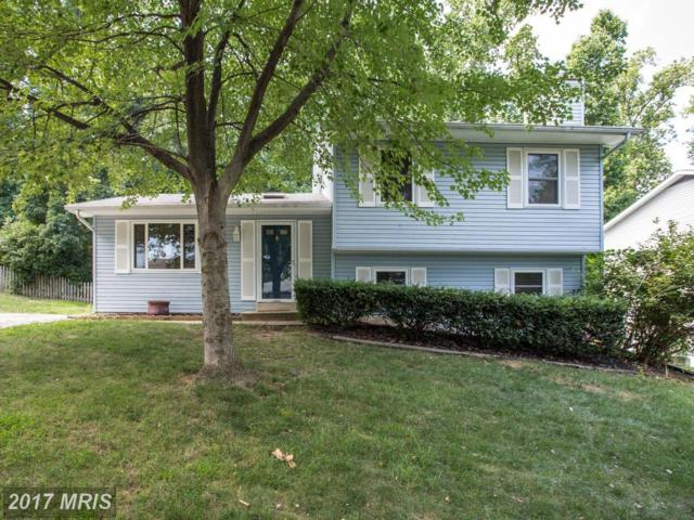 1118 Neptune Place, Annapolis, MD 21409 (#AA9996698) :: Pearson Smith Realty