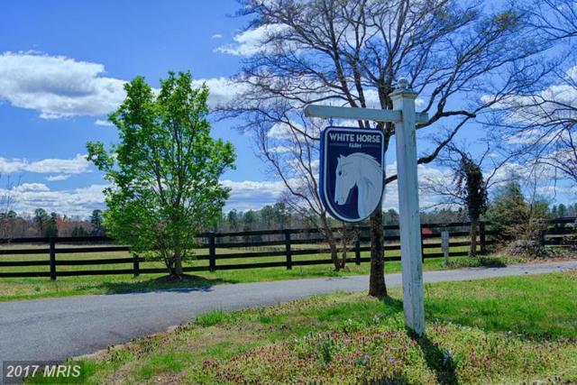 6670 Blenheim Road, Scottsville, VA 24590 (#AB9925629) :: RE/MAX Cornerstone Realty