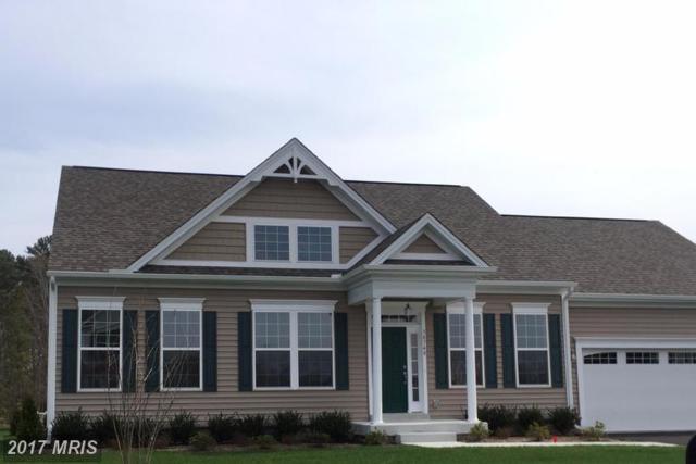 Castaway Drive, Greenbackville, VA 23356 (#AC9987291) :: Colgan Real Estate