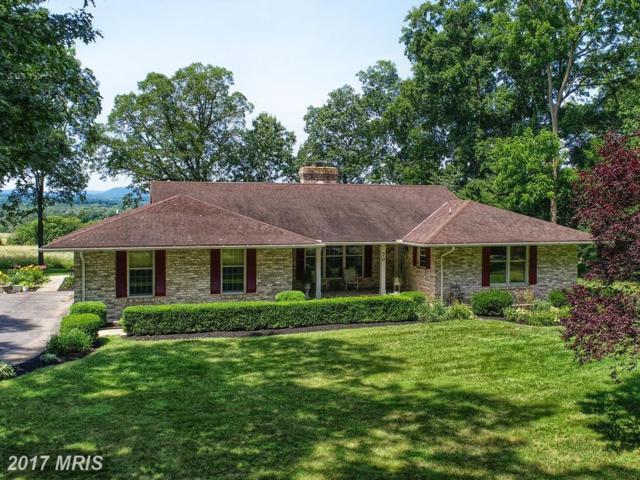 70 Red Oak Lane, Gettysburg, PA 17325 (#AD10023495) :: LoCoMusings