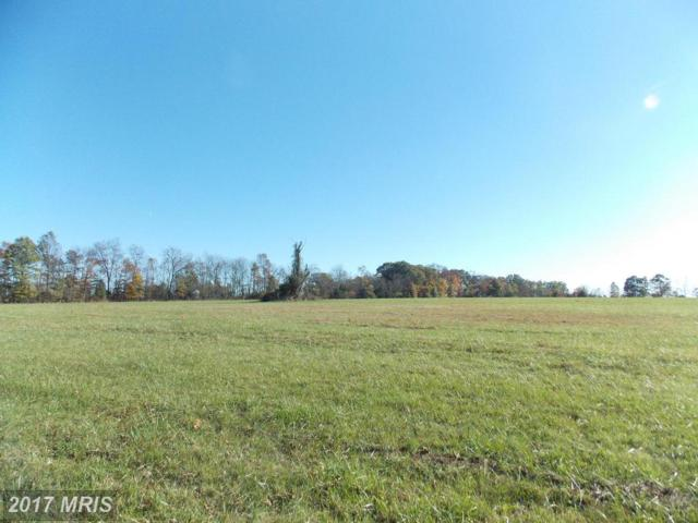 350 Stultz, Lot #3 Road, Fairfield, PA 17320 (#AD10112743) :: Pearson Smith Realty
