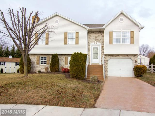 9 Revere Court, Littlestown, PA 17340 (#AD10133765) :: Pearson Smith Realty