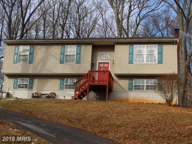 4 Veronica Trail, Fairfield, PA 17320 (#AD10135438) :: Pearson Smith Realty