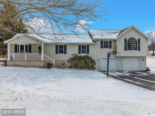 714 Lee Drive, Gettysburg, PA 17325 (#AD10137390) :: The Gus Anthony Team