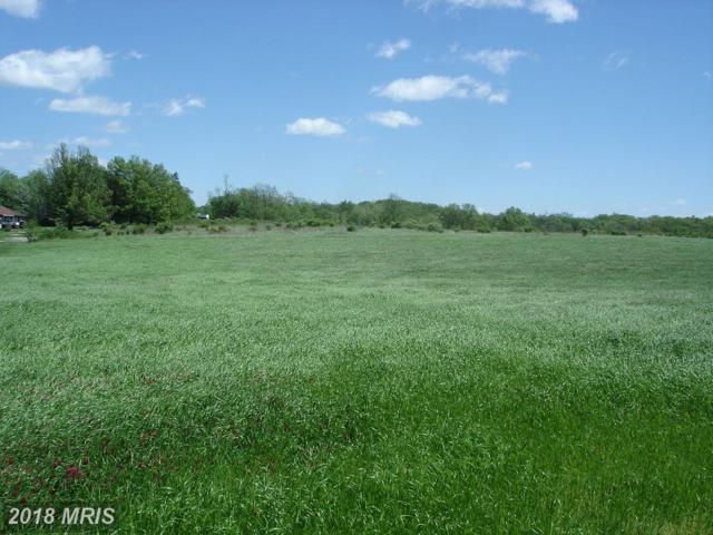 30 Cavalry Field Road, Gettysburg, PA 17325 (#AD10219939) :: Century 21 New Millennium