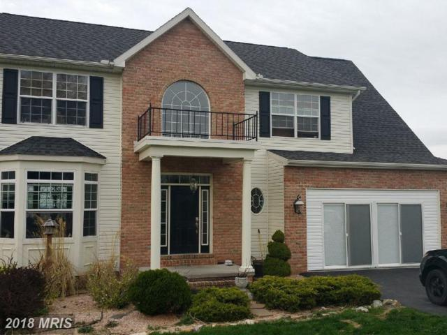 13 Helen Trail, Fairfield, PA 17320 (#AD10229099) :: The Gus Anthony Team