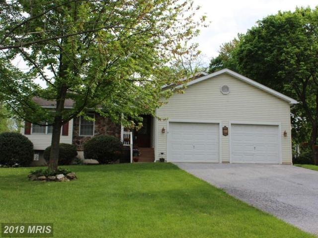 5 Snow Trail, Fairfield, PA 17320 (#AD10236270) :: The Gus Anthony Team