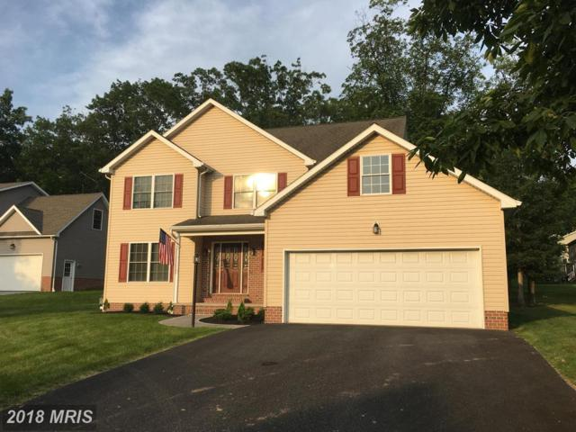 186 Twin Lakes Drive, Gettysburg, PA 17325 (#AD10274316) :: The Gus Anthony Team