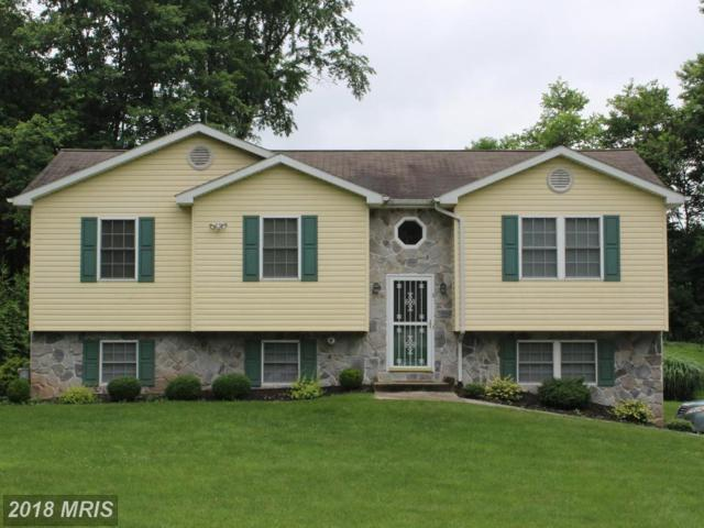8 Snow Trail, Fairfield, PA 17320 (#AD10278067) :: The Gus Anthony Team