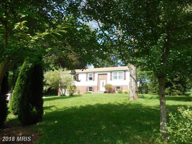 28 Sunfish Trail, Fairfield, PA 17320 (#AD10334819) :: Colgan Real Estate