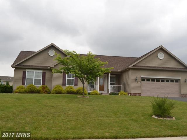 65 Wheat Drive, Abbottstown, PA 17301 (#AD9971196) :: The Maryland Group of Long & Foster