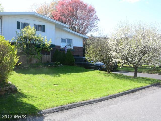 14805 Connecticut Avenue, Cresaptown, MD 21502 (#AL10026346) :: Pearson Smith Realty