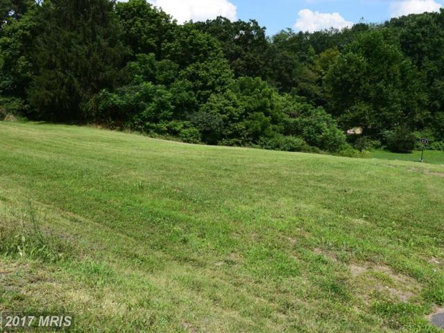 11916 Amherst Avenue, Cumberland, MD 21502 (#AL10031954) :: Pearson Smith Realty