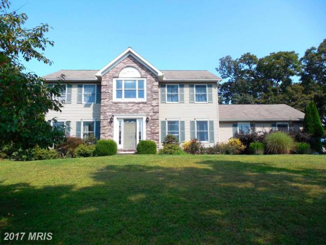 336 Fisher Drive, Cumberland, MD 21502 (#AL10059670) :: Pearson Smith Realty