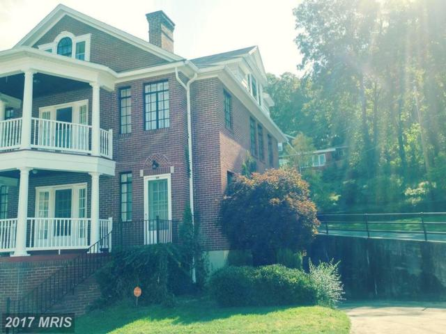 806 Gephart Drive, Cumberland, MD 21502 (#AL10062648) :: Pearson Smith Realty