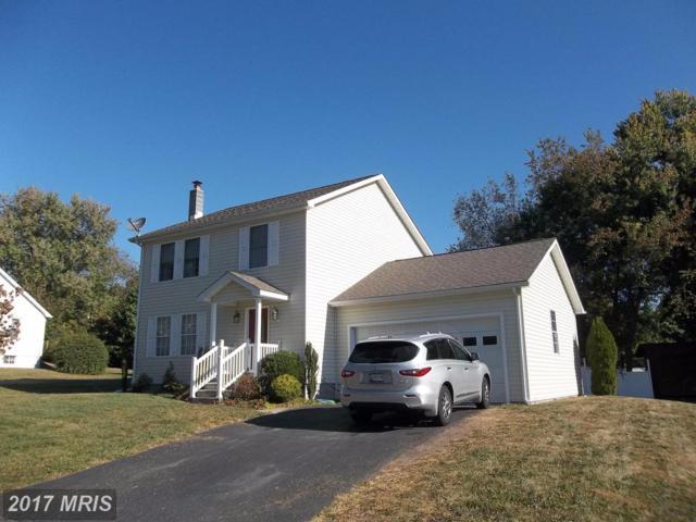 213 Frost Avenue, Cumberland, MD 21502 (#AL10071486) :: LoCoMusings