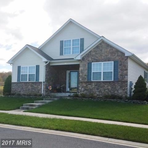 110 Heartwood Drive, Frostburg, MD 21532 (#AL10085416) :: Pearson Smith Realty