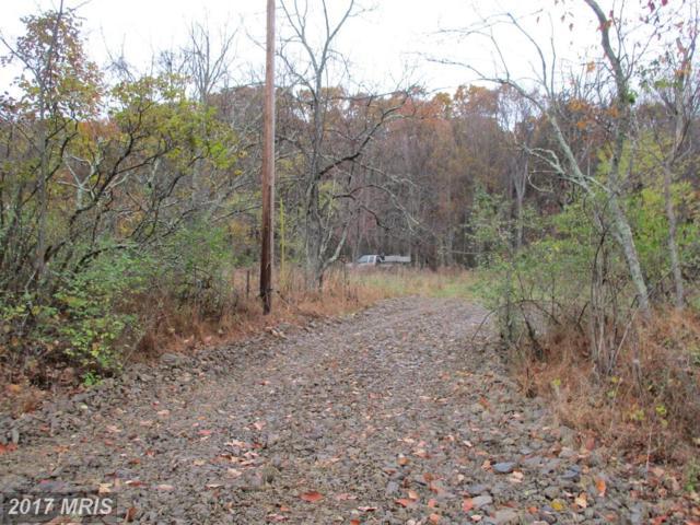 Old Hancock Road, Flintstone, MD 21530 (#AL10102982) :: Pearson Smith Realty