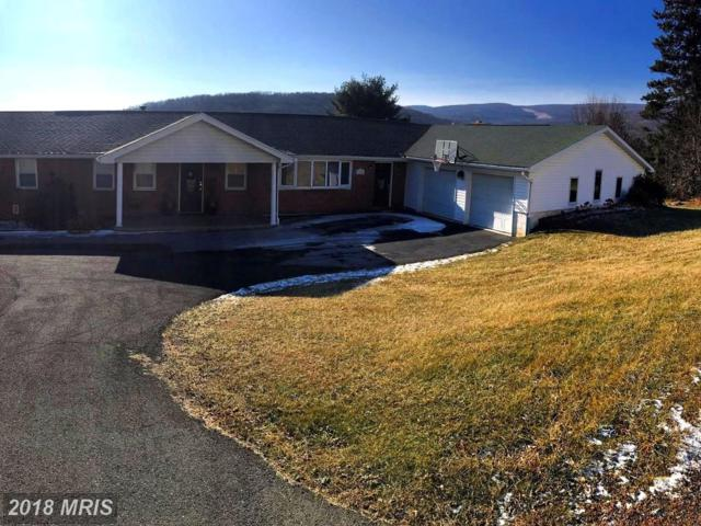 13136 New School Road NW, Mount Savage, MD 21545 (#AL10162502) :: The Bob & Ronna Group