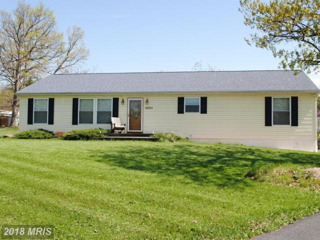 14203 Oak View Drive SW, Cumberland, MD 21502 (#AL10219321) :: Network Realty Group