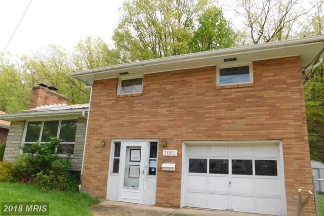 1001 Frederick Street, Cumberland, MD 21502 (#AL10249489) :: Advance Realty Bel Air, Inc