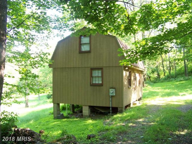0 Windy Hills Rd Ne, Cumberland, MD 21502 (#AL10265303) :: The Gus Anthony Team