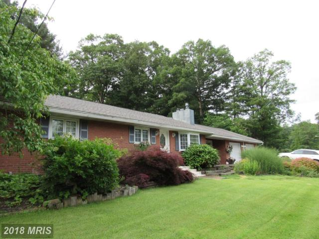 11712 Bayberry Avenue, Cumberland, MD 21502 (#AL10266930) :: The Gus Anthony Team