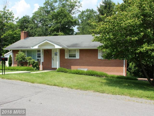 803 Valley View Drive, Lavale, MD 21502 (#AL10273897) :: AJ Team Realty